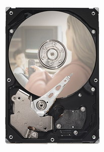 Seagate SV35.3 750GB, Serial ATA/300, 7200 RPM, 32MB