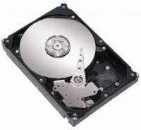 Seagate DiamondMax 21 160GB 8MB SATA II