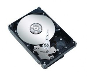 Seagate Barracuda LP ST32000542AS (2TB)