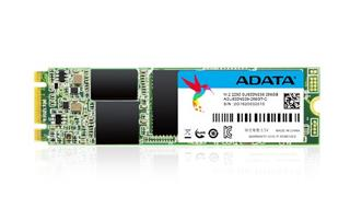 Adata ADATA SSD 256GB Ultimate SU800 M.2 2280 80mm (R:560/ W:520MB/s) (ASU800NS38-256GT-C)